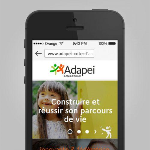 Adapei Les Nouelles Site internet mobile — charte graphique web