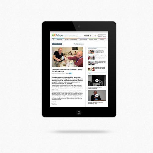 Adapei Les Nouelles Site internet — blog — charte graphique web
