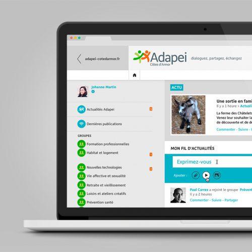 Adapei Les Nouelles Intranet — charte graphique web