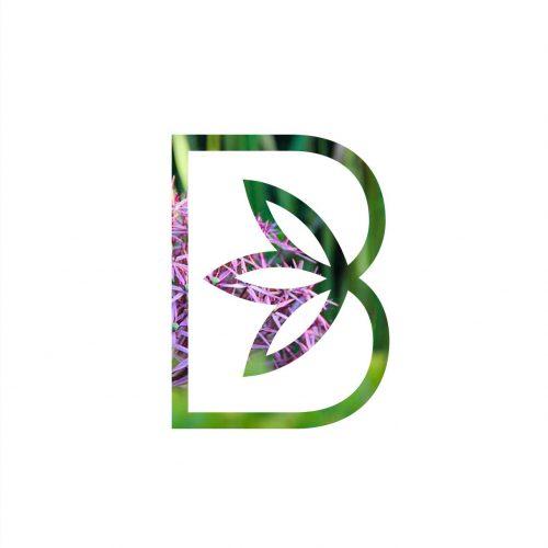 Brins de jardins Sébastien Briens — Architecte des jardins et paysagiste — identité visuelle — monogramme