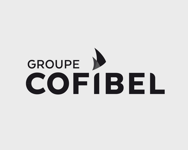 Identite Visuelle Cofibel Portefolio Logo Arnaud Chauvel Graphiste